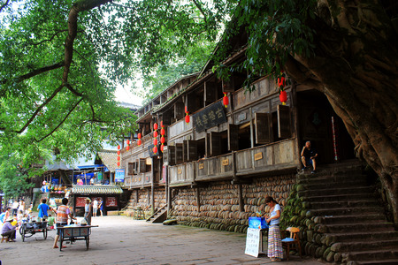 banyan: El antiguo banyan abajo