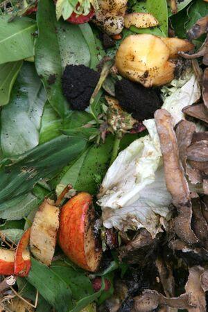 unsanitary: Biowast details