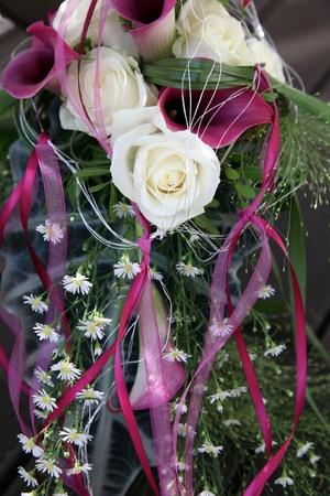 calas blancas: P�rpura y rosas blancas Callas decorado con bucles hermosos, coincidentes - formato vertical Foto de archivo