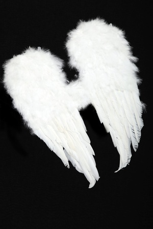feathered: Pair of angel wings on black background Stock Photo