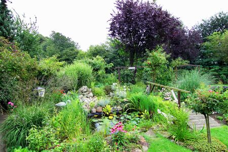 ornamental horticulture: Lush green landscaped garden with bridge over pond and a large variety of water plants and vegetation Stock Photo