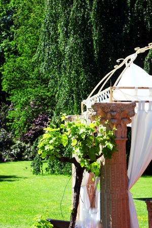 bower: Ornamental wedding canopy or bower in a beautiful treed lush green garden or park