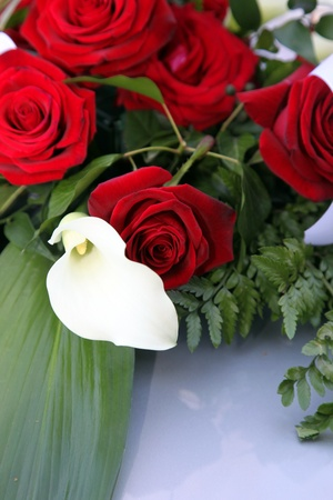 spadix: Arum lily, or white calla lily, in a bridal bouquet of fresh red roses lying on a table top Stock Photo