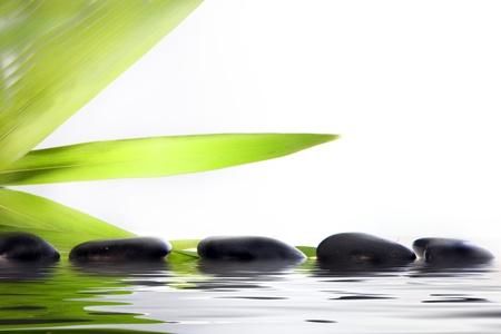 sumergido: Bienestar conceptual y la imagen de mimos spa masaje piedras parcialmente sumergidas en agua con hojas reflexivo hoja verde sobre un fondo blanco con copyspace Foto de archivo