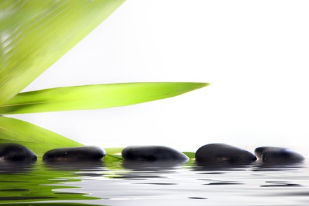 Conceptual wellbeing and pampering image of spa massage stones partially submerged in reflective water with green leaf fronds on a white background with copyspace photo