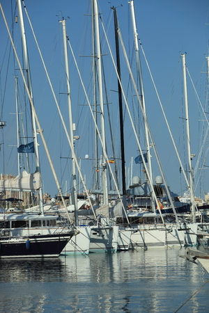sheltered: Tall metal masts and rigging of yachts moored in sheltered harbour catching the summer sun