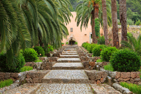palm garden: Straight garden walkway with cobblestones and gentle steps leading between two rows of palm trees to a wall with a small fountain