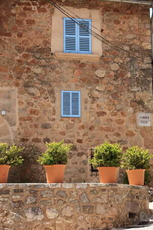 topiary: Row of ornamental leafy potted plants standing in the sunshine on top of an old stone wall outside a country house