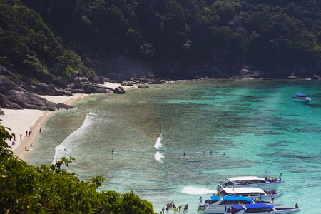 Similan Island of Andaman sea on sunny day with beautiful sunlight from high view look down to the beach can see the curve gulf of ocean and very clear sea sand on the beach also speed boat parking while tourists are walking and moving toward the beach. T