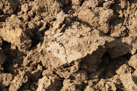 deficient: drought land