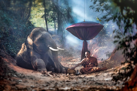 justness: The old monk with a young elephant in the forest.