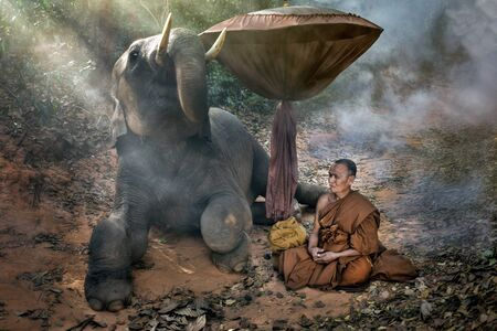 berate: The old monk with a young elephant in the forest.