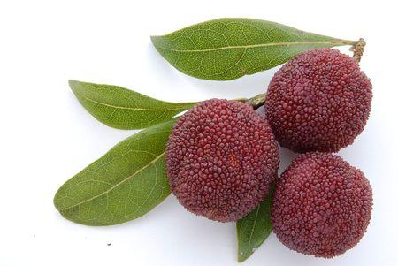 wex berry photo