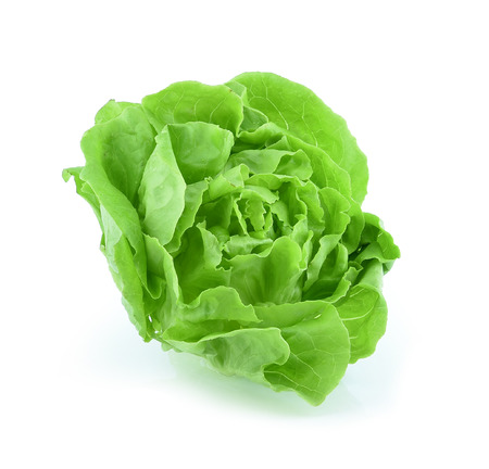 Cos Lettuce on White