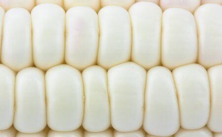 Corn  background  texture Stock Photo - 12868065