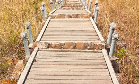 Wooden bridge over the wild grass   Stock Photo - 12868178
