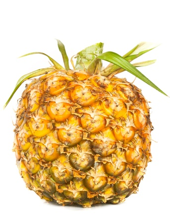 appetite pineapple on white background  Stock Photo - 14003513