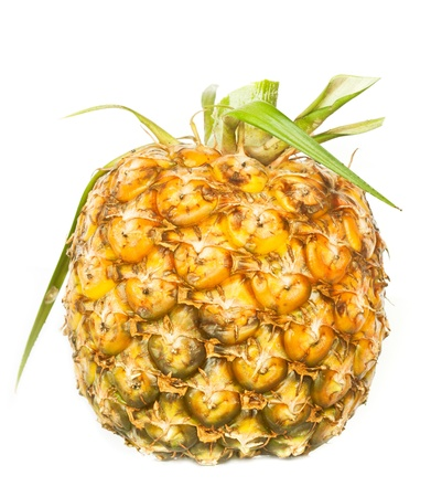 appetite pineapple on white background  Stock Photo - 14003511