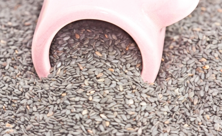 pile grain sesame drop out container Stock Photo - 15827700