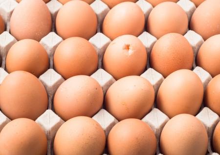 eggs break in carton