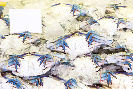 blue swimmer crab: Blue crab or Horse crab in market Stock Photo