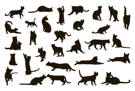 cat illustration: Big collection of cat silhouettes Illustration