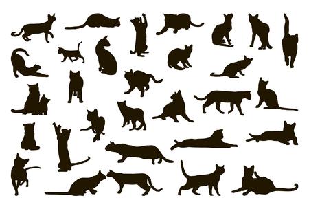 Gran colección de siluetas de gato