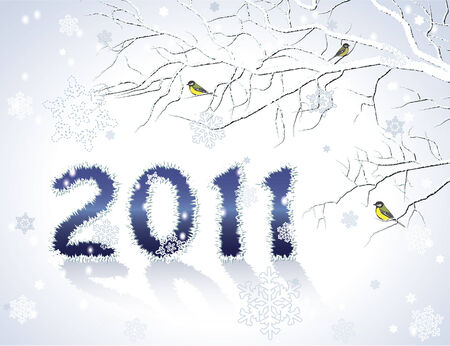 2011 New Year greeting card or background Illustration