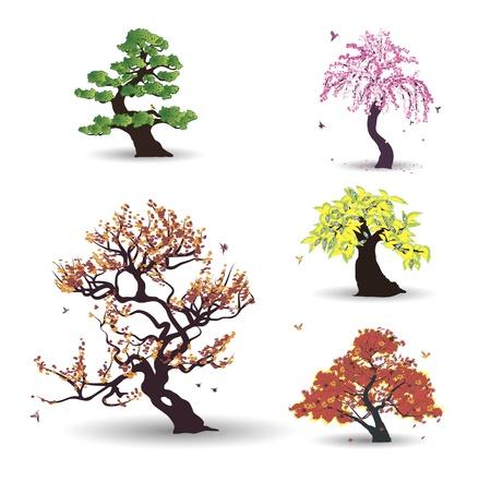 deciduous tree: Cinco �rboles con aves sobre el fondo blanco Vectores