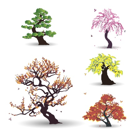 Five trees with birds on the white background