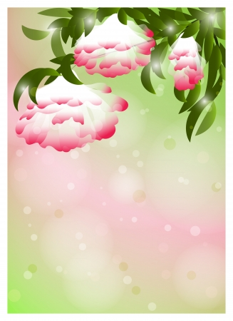 Romantic Flower Background