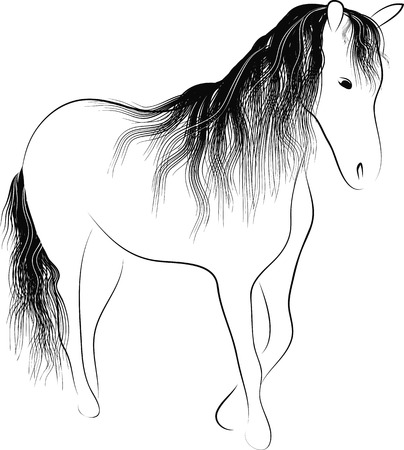 Silhouette standing horse  Illustration