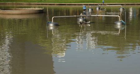 aerator: Electric aerator in pond use to make the good environment