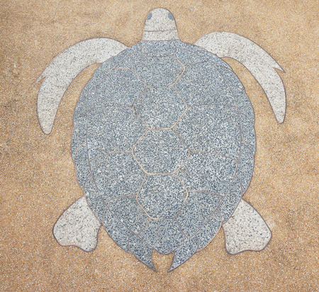 snapping turtle: Terrazzo floor outside is brown color, inside is lined with snapping turtle. Stock Photo