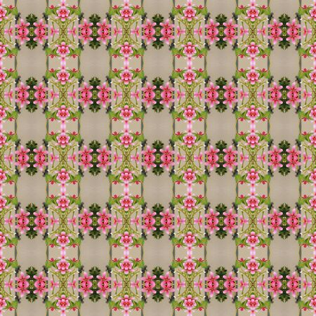 five petals: Beautiful of five flower petals bloom on the tree seamless use as pattern and wallpaper. Stock Photo