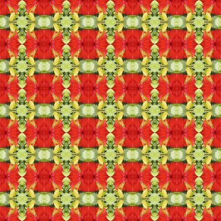 rosemallow: Full bloom of red hibiscus flower seamless use as pattern and wallpaper.