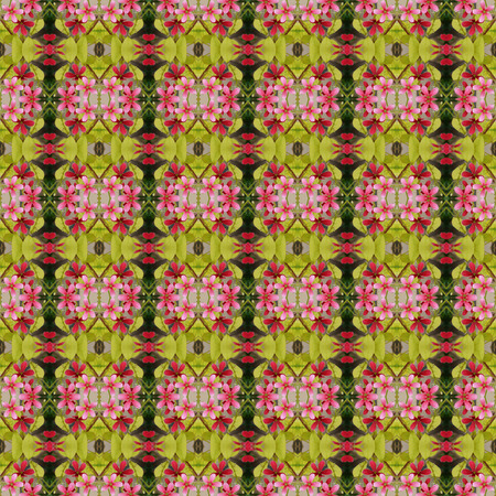 comrades: Beautiful of five flower petals bloom on the tree seamless use as pattern and wallpaper. Stock Photo