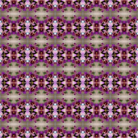 orchid house: Purple orchid grown in a hanging basket in front of the house seamless use as pattern and wallpaper.