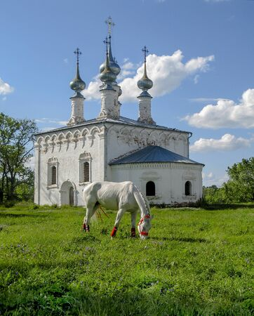 Russia, Vladimir region, the city of Suzdal. The horse is resting by the old church. Stock Photo