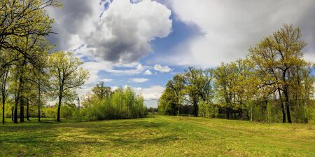Russia, Nizhny Novgorod, landscape: May spring sky and the first green leaves in the trees