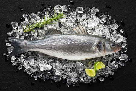 bass fishing: Fresh fish on ice on a black stone table top view Stock Photo