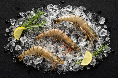 Fresh tiger shrimp on ice on a black stone table top view 免版税图像