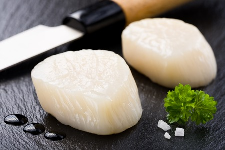 Scallops on black stone plate Standard-Bild
