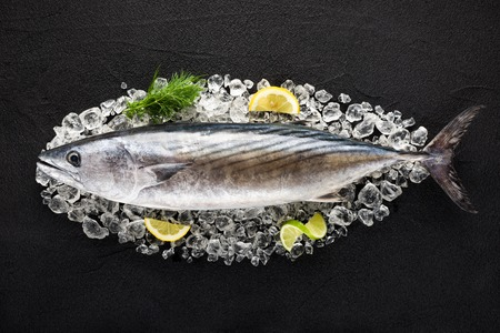 Tuna fish on ice on a black stone table top view Stock Photo