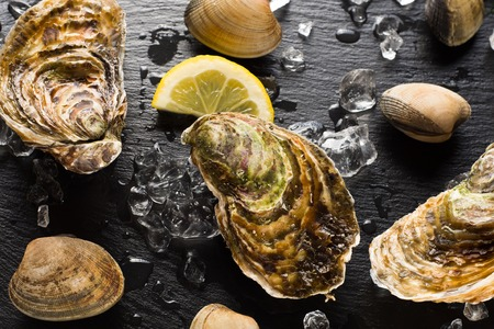 Fresh oysters and clams on a black stone plate top view Stock Photo