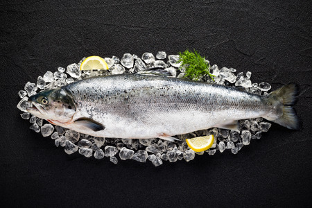 Salmon fish and ingredients on ice on a black stone table top view