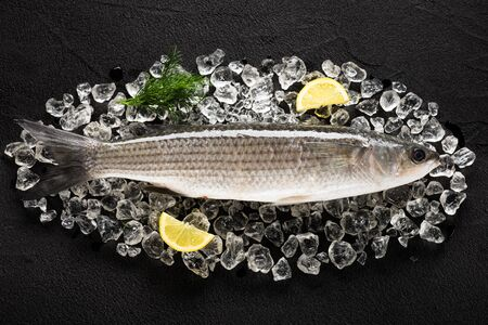 grey mullet: Fresh liza fish on ice on a black stone table top view