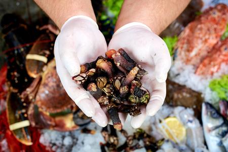 Verkoper die een spaanse schaaldieren (percebes) in de viswinkel aanbiedt Stockfoto