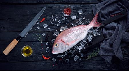 alimentos congelados: El pescado fresco español besugo (breca) en el hielo en una vista superior mesa de madera negro