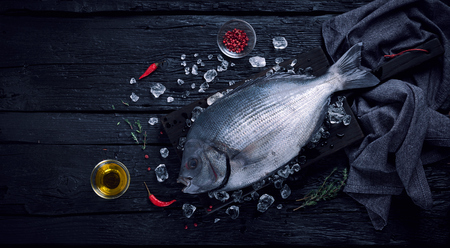 black fish: Fresh spanish bream fish (sargo) on ice on a black wooden table top view